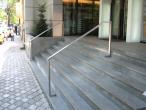 Regina Maria Top Line Handrail