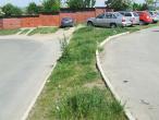 Gap Vasile Aron