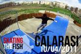 Skating The Fish Trip @ Calarasi