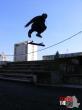Peste 16 ani | LOCUL 1: Muri din Deva, Hunedoara - switch kickflip