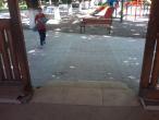 Foisor @ Parcul Municipal