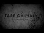 Tare ca Piatra 8 teaser