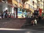 Go Skate Day Brasov.